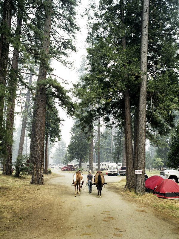 A young woman walks her horse to the rodeo campgrounds in Taylorsville, California.