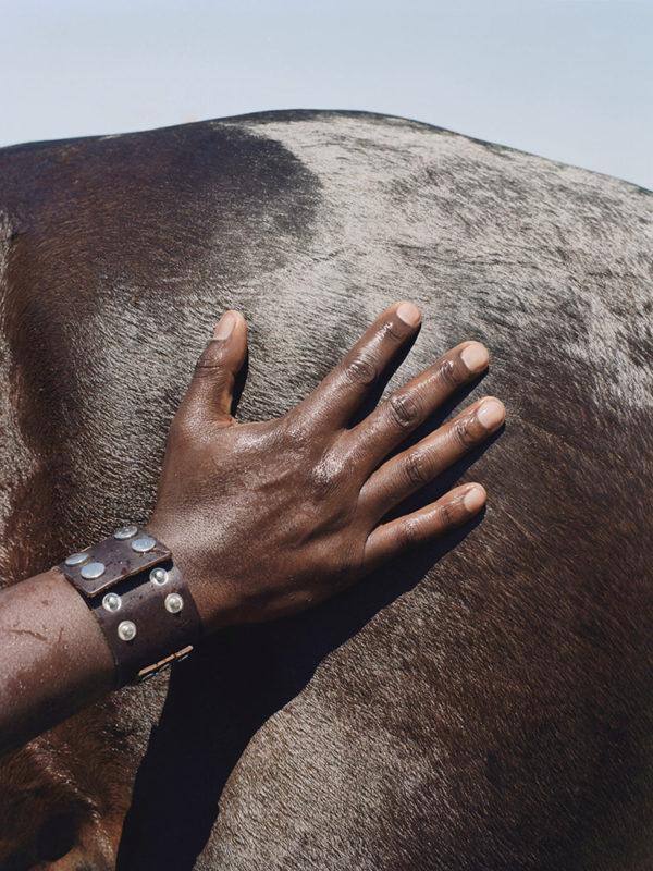 Black Cowboy, Prince Damons