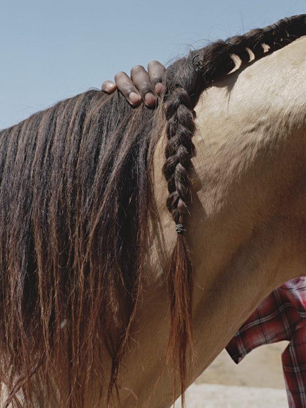 Prince Damons - Black Cowboy