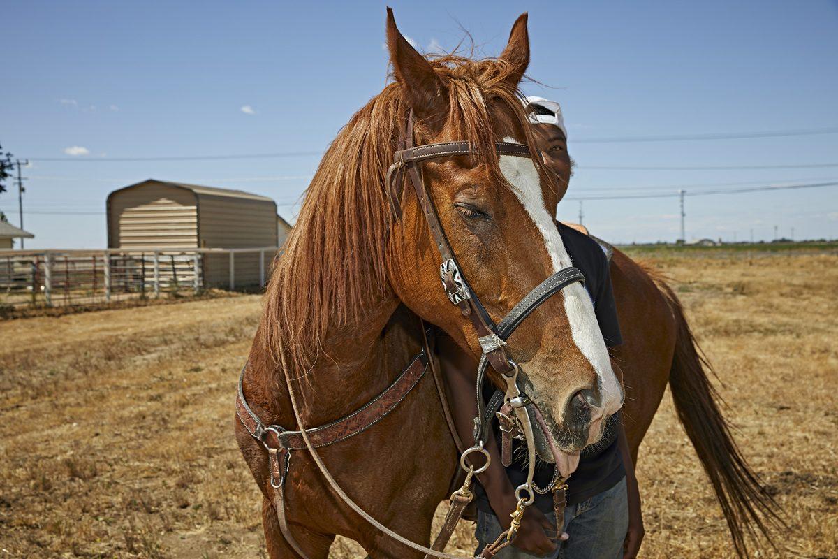 Black Cowboys- Loyalty Riders